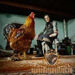 ayam brahma, ayam terbesar, unik, ciri khas
