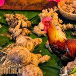 jamu untuk ayam, ayam aduan, ayam bangkok, ayam petarung, campuran, ramuan, jahe, kunyit, madu, telur bebek, daging kambing, ikan lele